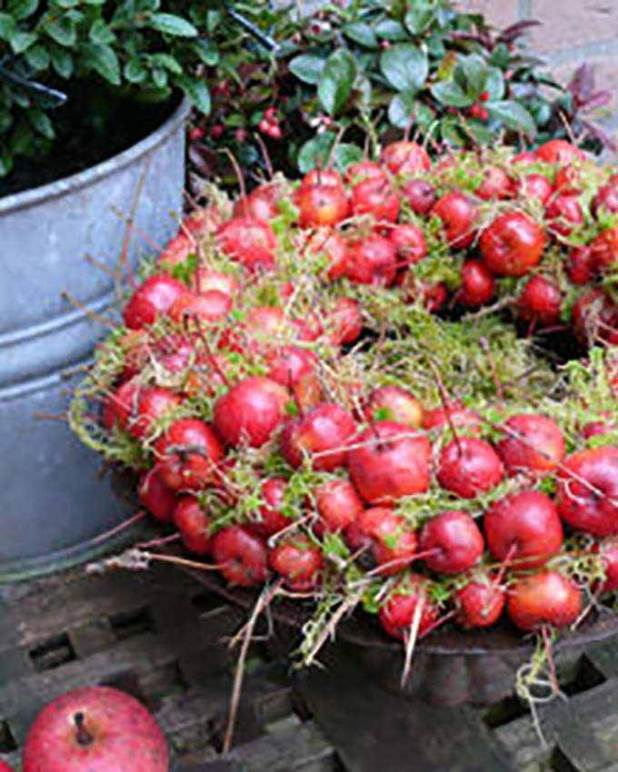 fall wreath made from crab apples