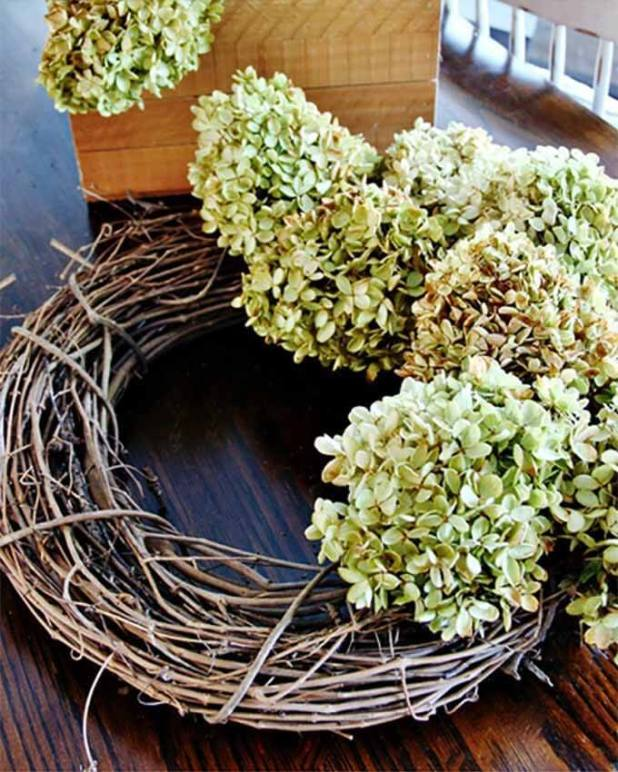 Fall wreath made from dried hydrangea