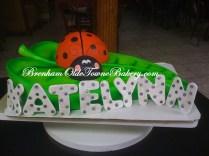 ladybug leaf birthday