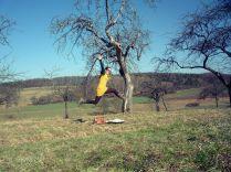 gelbes Kleid mit Eulen selbstgenäht