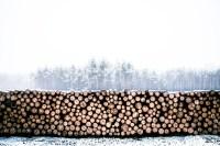 Holz als Raummeter (Ster), Schttraummeter & Festmeter ...