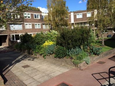 Brentford-Dock-Julias-Garden