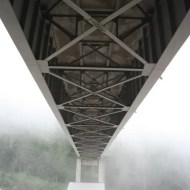 Bridge over Nisqually River