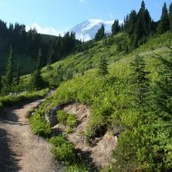 Mount Rainier from Skyline Trail
