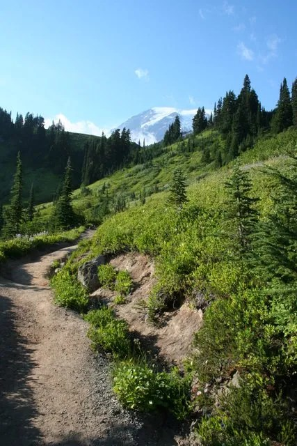 Mount Rainier from Skyline Trail