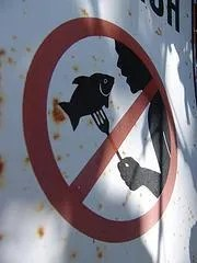 Do Not Eat Fish