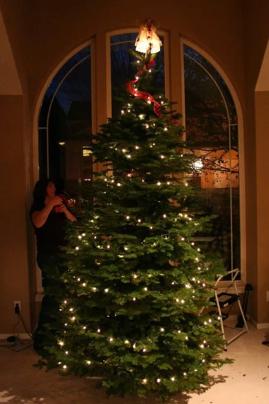 Suzi decorating