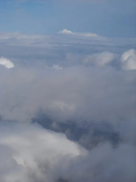 Mt. Hood Towers Over the Clouds