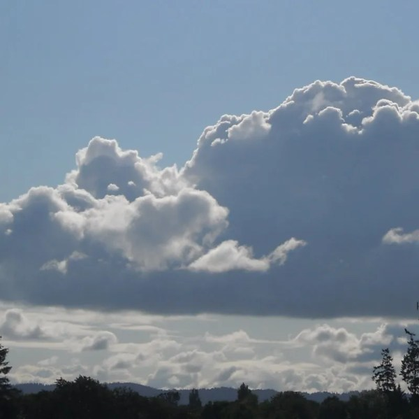 Hillsboro Sky