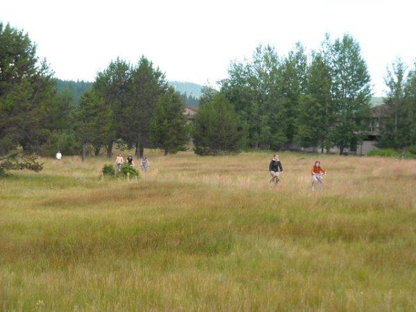 Riding through the meadow
