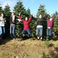 We're getting a Christmas tree! *
