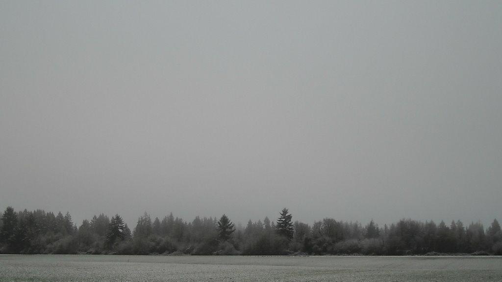 Snow Dusting