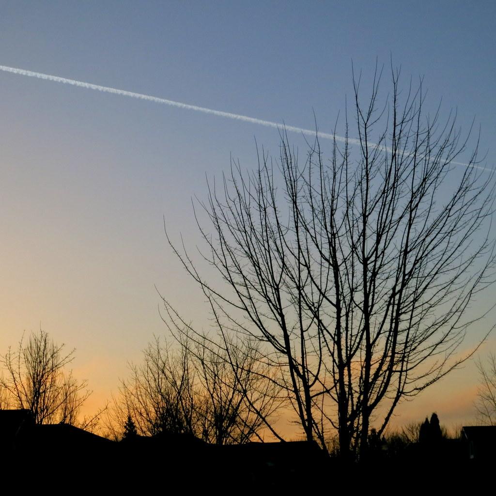 Morning in Hillsboro