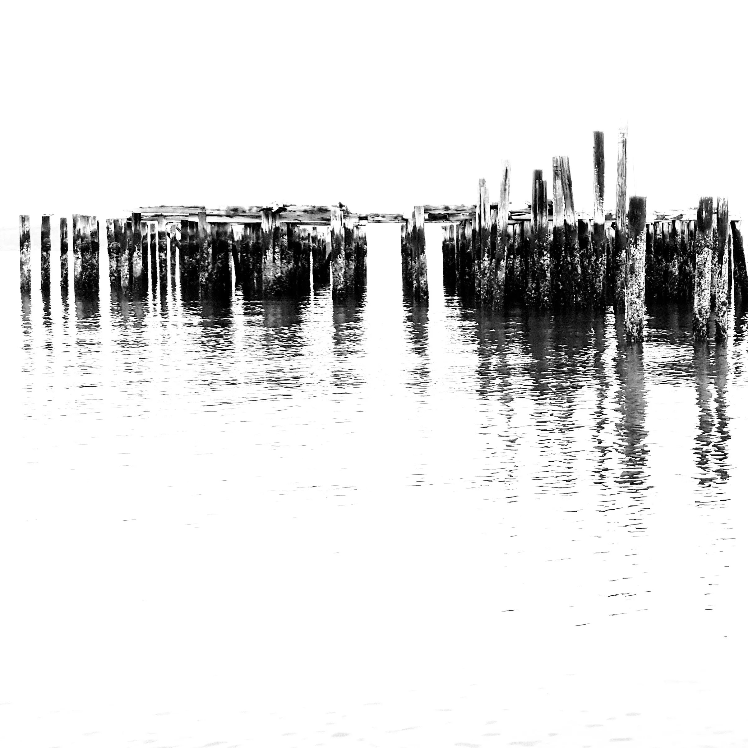 Dickman Mill pilings