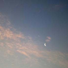 Greeting the rising sun