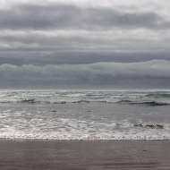 Gray Pacific
