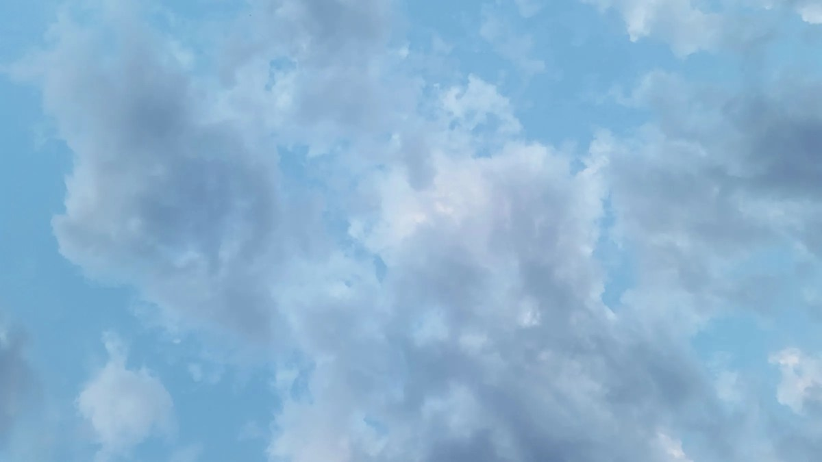 Walla Walla Skies