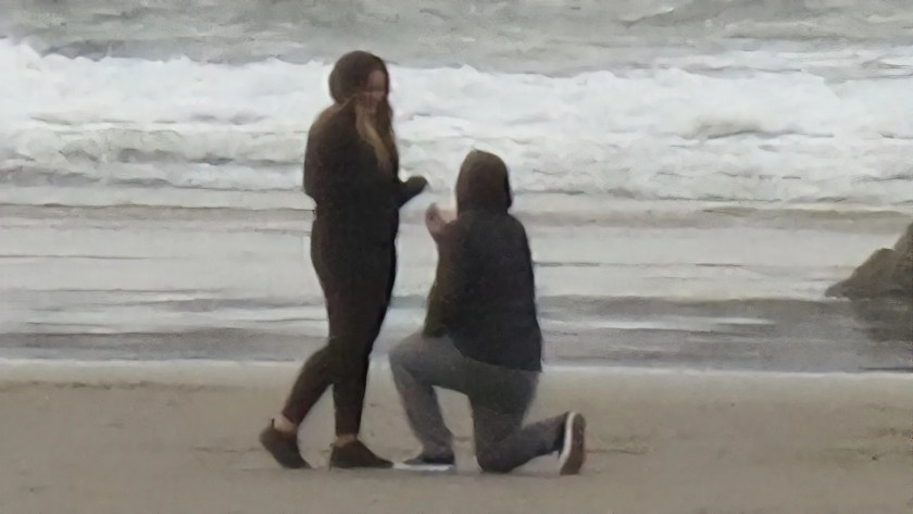 Proposal on the beach