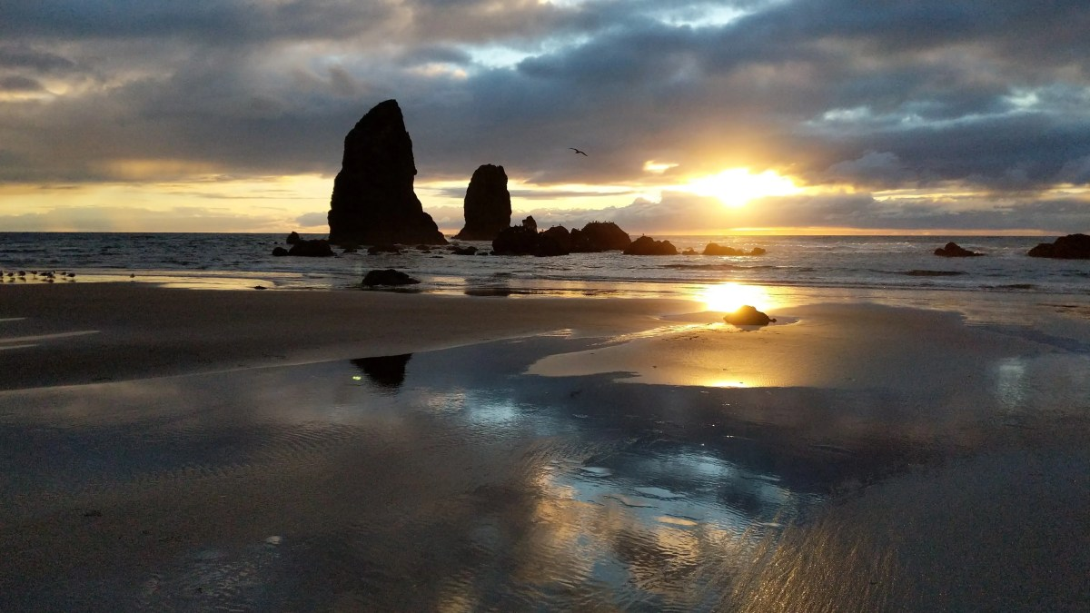 Cannon Beach Memories