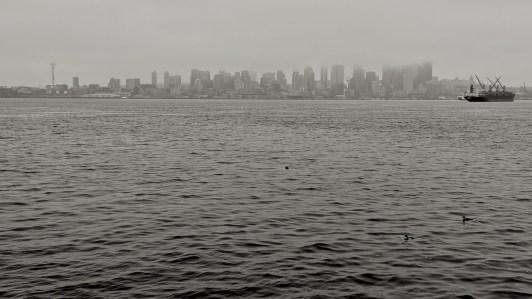 Seattle from Seacrest Park