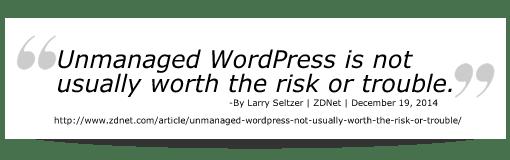 Unmanaged WordPress Risks