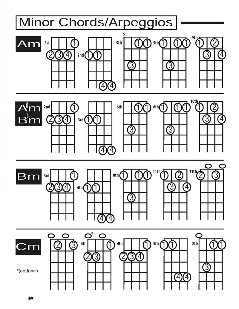 cigar-box-guitar-technique-book-4-string-chords