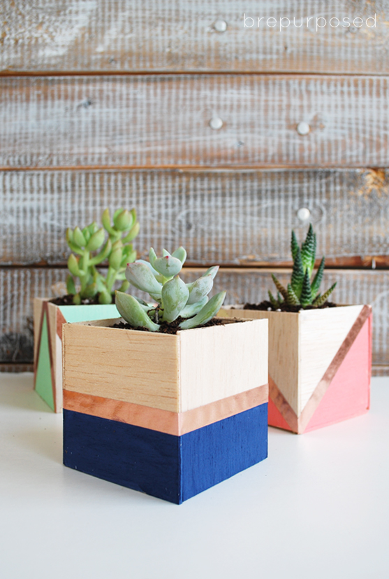 easy succulent planter tutorial