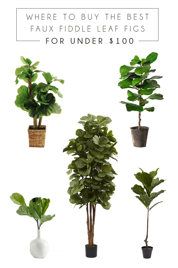 where to buy the best faux fiddle leaf fig trees for under $100