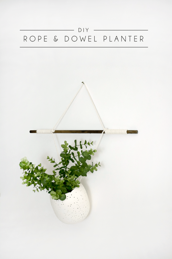DIY Rope & Dowel Planter