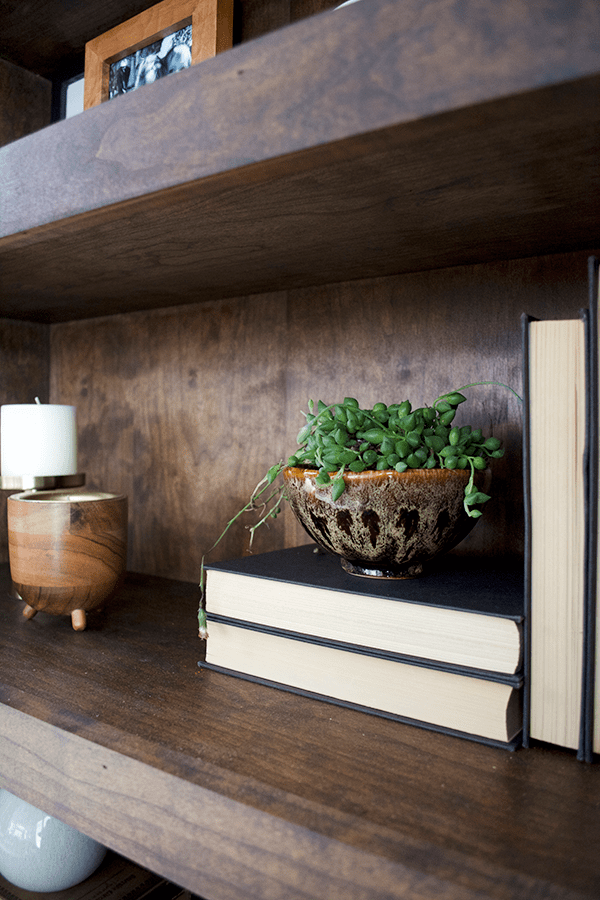 Vintage pottery used as a planter on open shelving