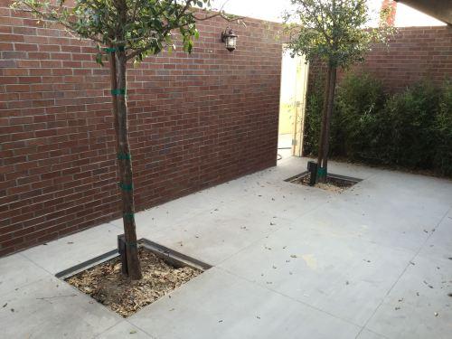 Patio area for Vegenation