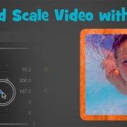 crop scale video 2