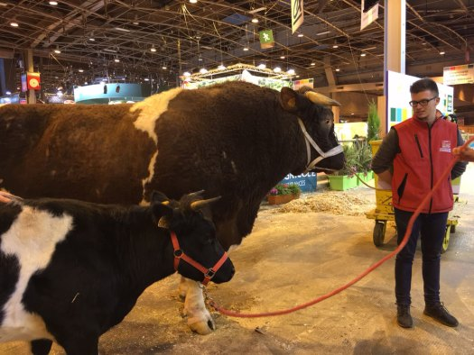2016-salon-agri-img_4199
