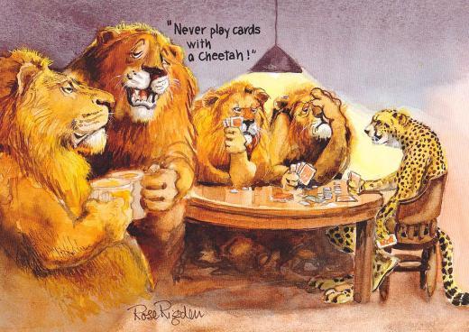 cheetah joke