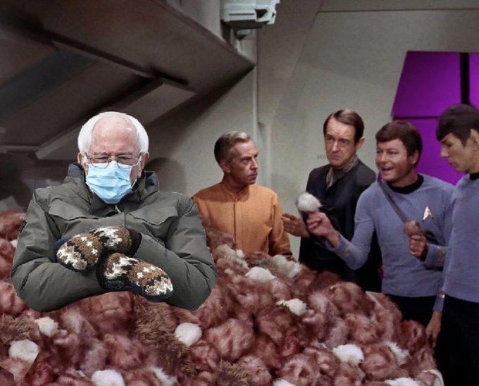 Bernie Trek