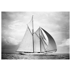 Unframed Black and White, Silver Gelatin, Limited edition Photograph of sailing yacht Westward sailing at sea with full sails of air. Taken by a famous marine photographer Frank Beken in 1932. This photograph was scanned from original glass plate negatives and developed in the dark room as they used to do it period. Available to purchase in deferent sizes from Brett Gallery. Beken of Cowes Framed Prints, Beken of Cowes archives, Beken of Cowes Prints, Beken Archive, Cowes Week old Photographs, Beken Prints, Frank beken of Cowes.