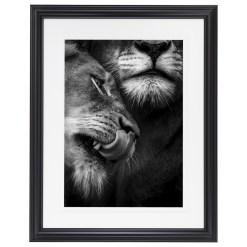 Ross Couper Animal Black and White Fine Art Photography, Wildlife Photographer, Fine art photography for Sale, Brett Gallery, Art for Home, Corporate Art, Large Format Photography, Wildlife Photography, Art Gallery, Lion