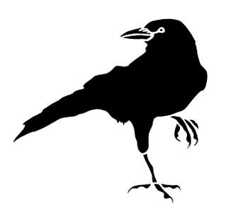 raven-319-300px