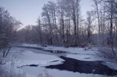 Der Viskan, zum Großteil zugefroren