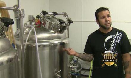 Radicle Effect Brewerks | EPISODE 4 – SEGMENT 1
