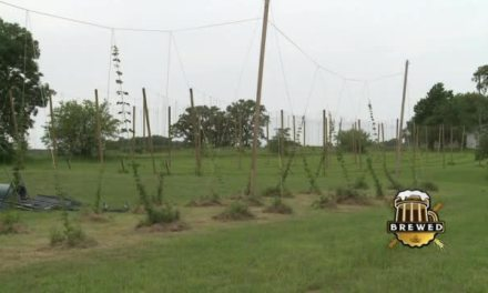 Buck Creek Hops| EPISODE 5 – SEGMENT 3