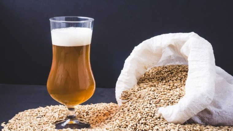 A sack of barley and a glass of light golden beer.