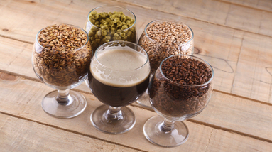 Glass of dark beer with glasses filled with hops and different types of brewing malts.