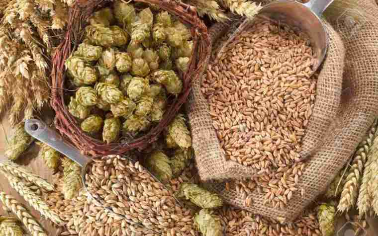A basket of hop flowers, an open sack of wheat grains, a scoop of grains and some dry wheat.