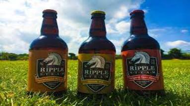 Three different beer bottles on the grass from Ripple Steam Brewery