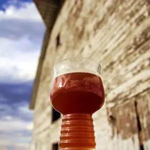 Saison Recipe Fukuiraptor Farmhouse Ale Brewgr