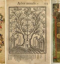 judaism tree diagram [ 1600 x 744 Pixel ]
