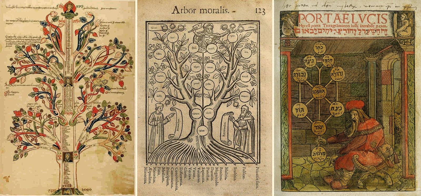 hight resolution of judaism tree diagram
