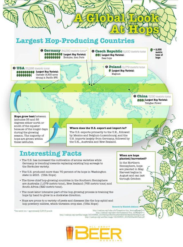 Infographie du houblon