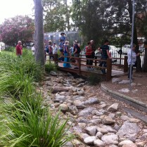 The dry creekbed to capture and slow stormwater.